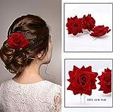 Yean Juego de horquillas decorativas para el pelo de la bailarina de flamenco...